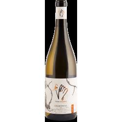 Chardonnay 2018 suché